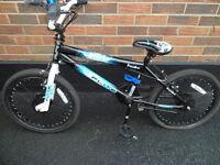 Boys 20 inch Flite Punisher BMX Bike