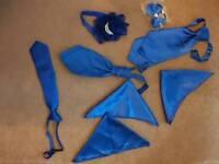 Royal blue wedding accessories