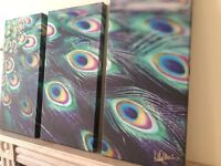 STUNNING PEACOCK PHOTO CANVASES X 3