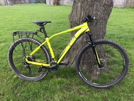 specialized rockhopper 29 Large-great condition