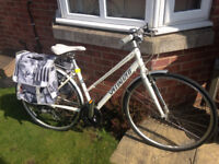 """Ladies Specialized Push Bike (as new) suit 5',4'' - 6'.0"""" with accessories"""