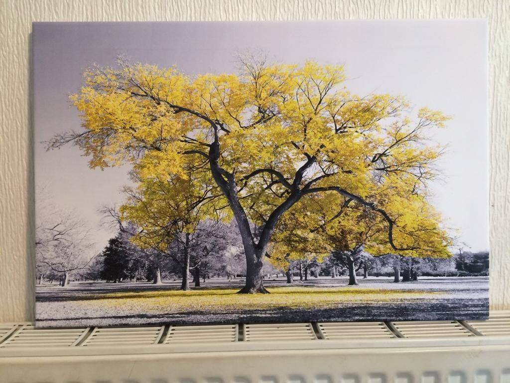 Yellowgrey Tree Canvas Art In Newton Mearns Glasgow Gumtree