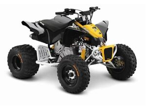 2016 can-am DS 90 X -