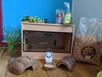 Reptile Vivarium with accessories