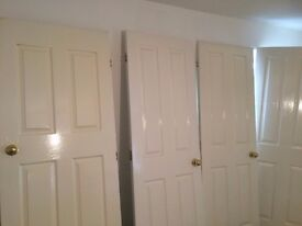 13 Internal white door with handle