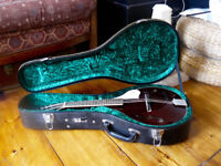 Tanglewood Teardrop Mandolin with Hard Case - Never Played!