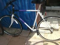 raleigh hybrid mountain bike working perfect and ready for use