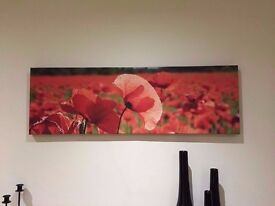 Wall canvas/art large