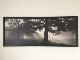 Woodland canvas picture with hard frame