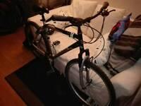 Giant Bicycle,Rock model