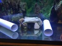 3 1/2 ft jewel Aqua tank