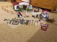 Horse school and extra sets