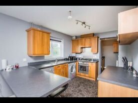 2 Bed 2 Bath Apartment to Rent