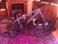 'GIANT' jump bike (grey)