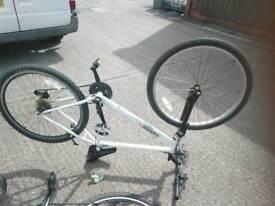 Mogul bike.