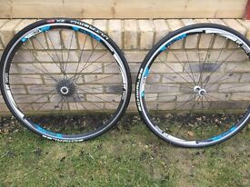 DT Swiss CSW RA 1 wheel set with Schwalbe Ultremo ZX tyres and Shimano 12-28 Casette