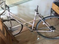 Nopsa pink Scandanavian ladies bike for 5ft 4 to 5ft 6 riders