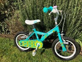 Apollo Kids 14in Bike