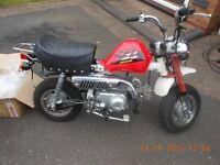 JINCHENG 70CC MONKEY BIKE Honda kawasaki pit yamaha suzuki sky team paddock xmas 50cc motor cylce pe