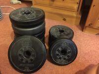 Weider Olympian weights