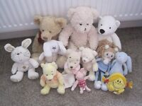Collection of 11 cuddly soft bears