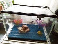 Fish tank 25 litres