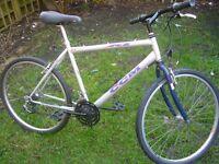 Good bike, made in Canada.
