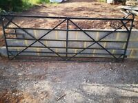 Wrought iron gate £150 collect
