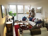 Double en-suite room in a beautiful, light & spacious house on Windmill Hill
