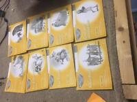 Read and Write Inc set of 8 yellow books