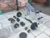 Olympic bar with weights , bench, dumbbells, arm curler package.