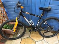 Male and Female mountains bikes for sale - hardly used.