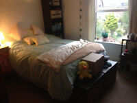 *Fully furnished large double STUDENT bedroom available*