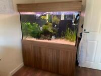 "Fish tank 52"" x 30"" x 30"""