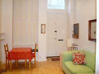 DRUMDRYAN STREET - Bright ground floor main door studio flat in great central location of Tollcross.