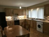 Freshly painted spacious 3 bedroom house in Irvinestown with new kitchen