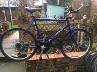 Ugly Mans mountain bike