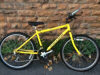 Raleigh Avalanche Small Adults Mountain Bike