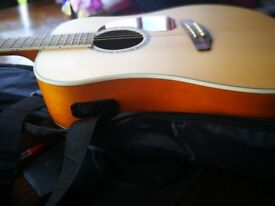 Ashton guitar with built in tuner . Perfect condition .never used . Includes strap and bag