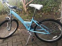 Girls Revolution Skye Bike