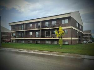 BACHELOR - 1BED- 2BED APTS FOR RENT