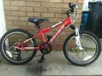 """Carerra Blast 20"""" wheel bike."""