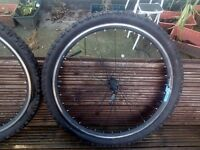 "Weinmann 26"" fat tire & Rims nearly new"