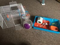 Complete hamster cage and set up