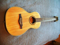 EKO Parlor guitar and case, wonderful 'sweet tone', easy to play.