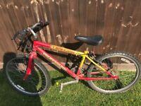 Boys 24inch bike