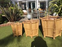 3cane lined planters of varying sizes