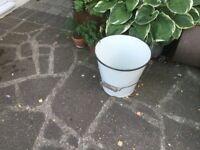 Enamel milking bucket