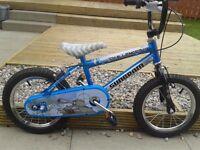 Kids bike size 14