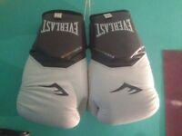 Boxing Gloves Everlast 16Oz